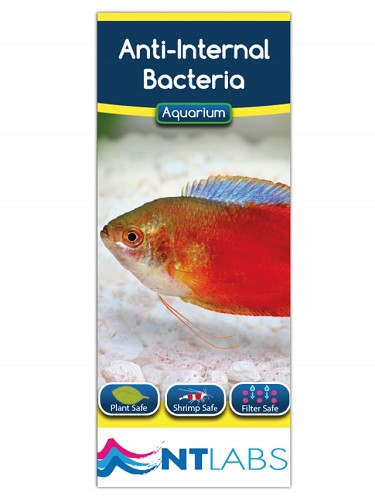 NT Anti inwendige bacterieen 100 ml.