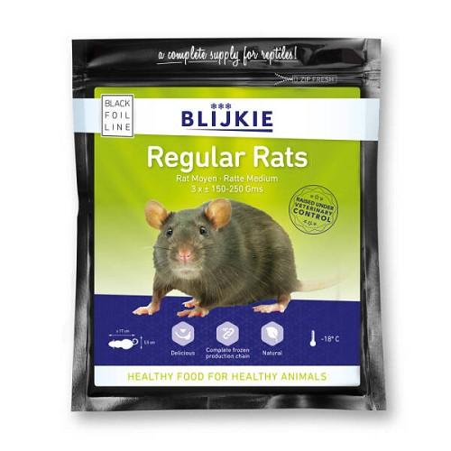 Rat adulte ordinaire  (par 3 pièces X 150-250 gr.)